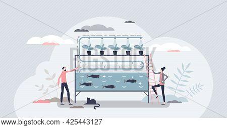 Aquaponics As Aquaculture And Hydroponics Agriculture Combination Tiny Person Concept. Smart Ecologi