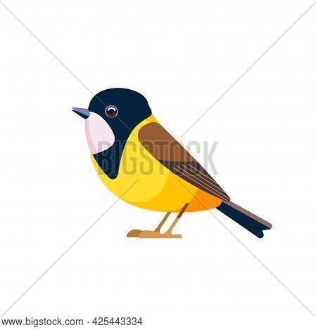 Golden Whistler Or Australian Golden Whistler, Is A Species Of Bird Found In A Forest, Woodland, Mal