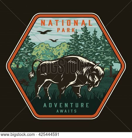 National Park Colorful Vintage Badge With Bison Flying Birds Grass And Trees Isolated Vector Illustr