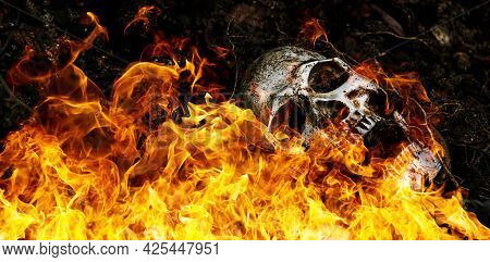 In Front Of Human Skull Buried On Fire In The Soil With The Roots Of The Tree On The Side. The Skull