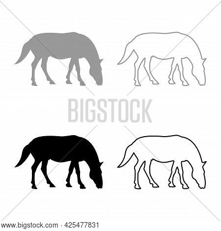 Steed Horse Equestrian Equine Stallion Thoroughbred Mustang Silhouette Grey Black Color Vector Illus