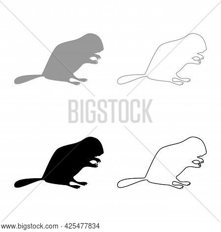 Beaver Animal Rodent Stand Silhouette Grey Black Color Vector Illustration Solid Outline Style Simpl