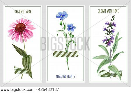 Three Vertical Banners With Wild Flowers And Tape