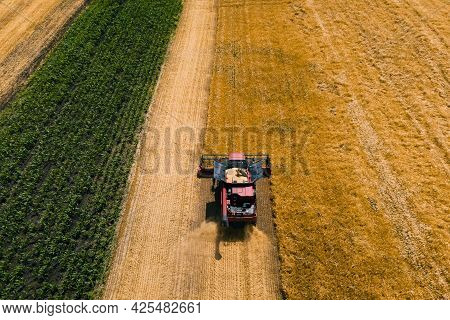 Aerial View Of Combine Harvester Agriculture Machine Harvesting Golden Ripe Wheat Field. Combines In