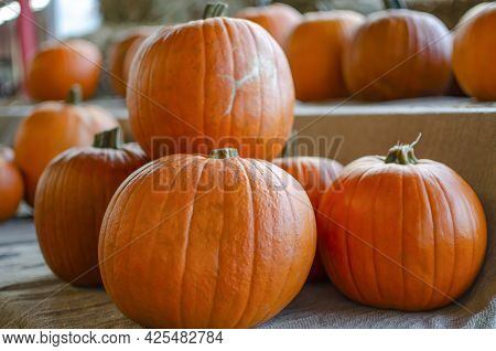 Halloween Pumpkin. Pumpkin On A Background Of Hay In A Rustic Style. Background For Halloween. Place