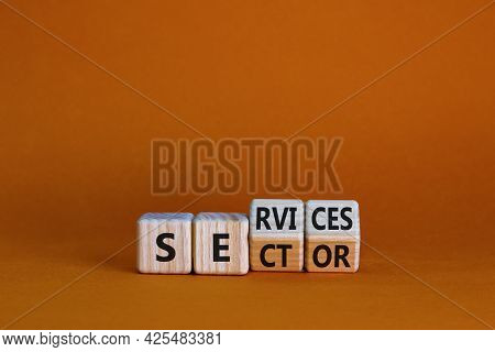 Services Sector Symbol. Turned Wooden Cubes With Words Services Sector. Beautiful Orange Background.