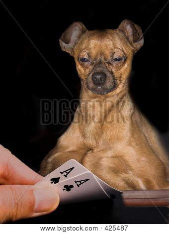 poster of playing poker with a dog