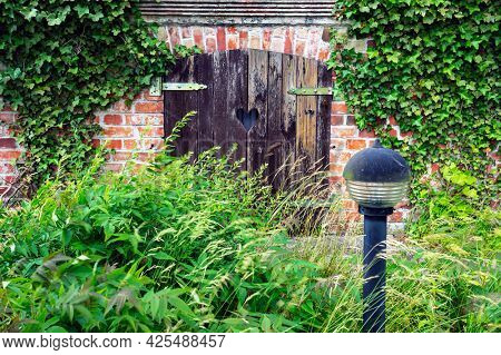 Old wooden doors and red brick wall overgrown with ivy in Ustka, Poland.