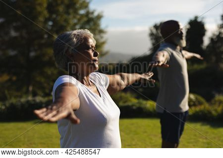 Senior african american couple practicing yoga in stunning countryside. retirement and active senior lifestyle concept.