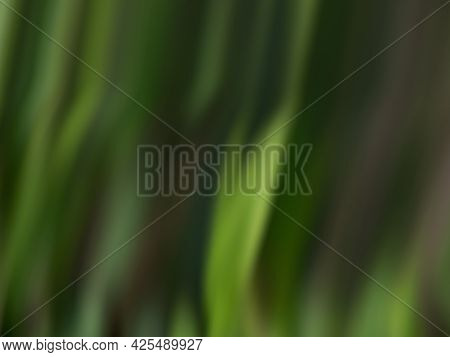 Intentionally Blurred Green Colored Nature Background - Backdrop