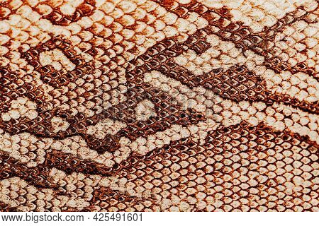 Genuine Leather Texture With Imitation Of Exotic Reptile Pattern, Trendy Background. Concept Of Shop