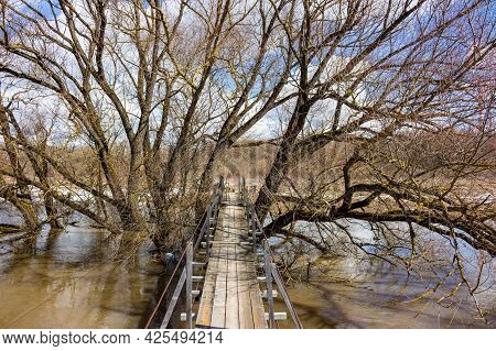 Wooden Hinged Bridge Laid Through Trees Above The River During A Spring Flood, Scenic View