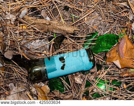 The Neck Of A Broken Wine Glass Bottle On Pine Needles. Broken Glass. Wine Bottle. Camping In The Fo