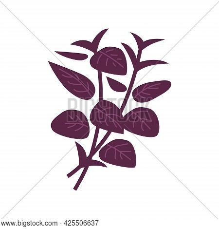 Heap Of Purple Basil. Vector Illustration Isolated On White Background.