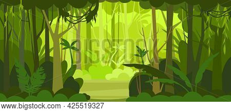 Jungle Illustration. View On Glade. Dense Wild-growing Tropical Plants With Tall, Branched Trunks. R