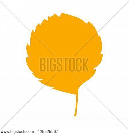 Fall Orange Alder Leaf. Autumn Leaf, Herbal Element. Can Be Used As Sign, Symbol, Icon. Autumn Botan