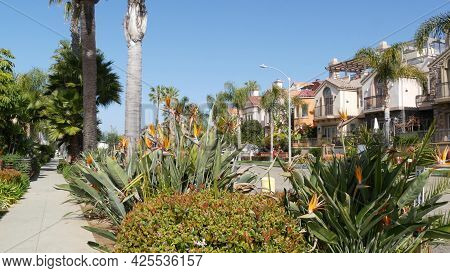 California Typical Suburban Street, Tropical Oceanside Usa. Different Colorful Houses Row. Generic A