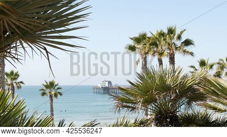 Pacific Ocean Beach, Green Palm Trees And Pier. Sunny Day, Tropical Waterfront Resort. Vista Viewpoi