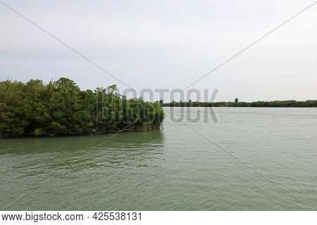 Wide Mouth Of The River Po And A Small Island