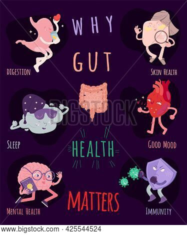 Why Gut Health Matters. Vertical Vector Poster.