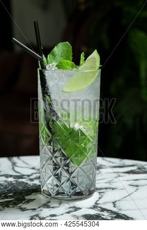Gin Tonic Mojito Glass Coktail Water Ice Lime Tropical Leaves Table Drink