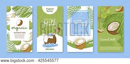 Collection Different Coconut Milk Vertical Banners Vector Flat Illustration Tropical Organic Nectar
