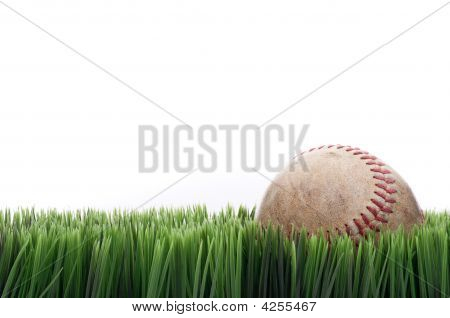 A Worn Leather Baseball In Grass With A White Background