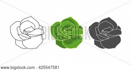Set Succulent Echeveria Lovely Rose - Color Green, Doodle, Simple. Collection Isolated Element On Wh
