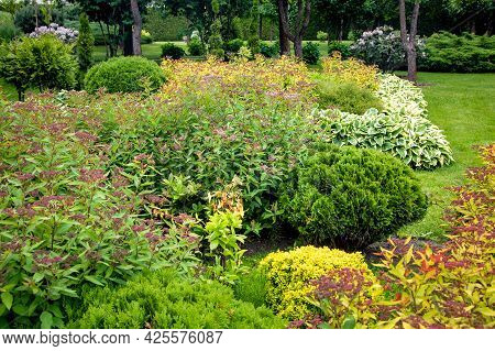 Garden Bed With Bushes And Flowers Landscaping With Plants For Backyard Decor In Summer Season In Th