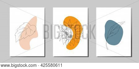A Set Of Posters Of A Fashionable Modern Abstract Composition Of Sunflower And Leaves For Decorating