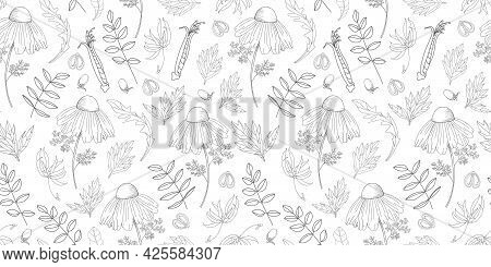 Simple Delicate Floral Pattern. Thin Lines. Summer Fabric, Textile And Packaging Design. Medicinal H