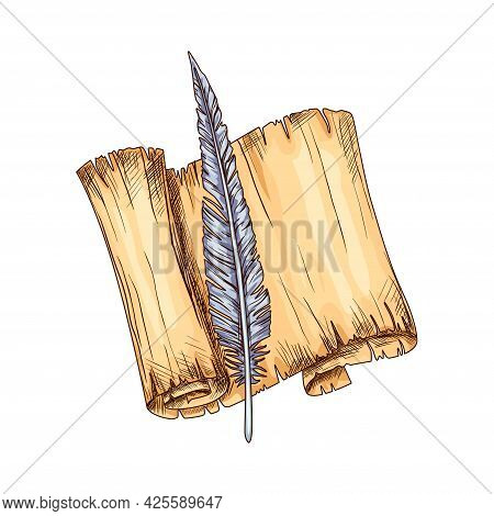 Old Open Parchment And Feather. Education And Wisdom Concept. Vector Icon For Education And Literatu