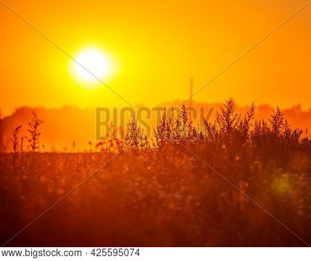 A Sun Disc Shining Through The Mist During The Summer Sunrise. Summertime Scenery Of Northern Europe