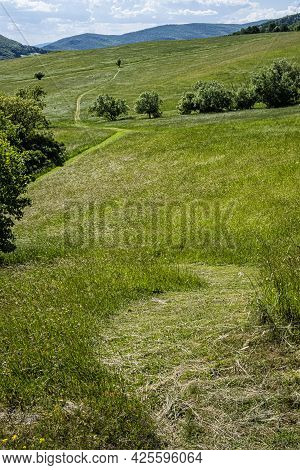Meadow Near Lucka Village, Slovak Republic. Hiking Theme. Seasonal Natural Scene.