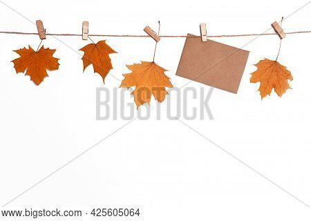 Layout With Autumn Fallen Maple Leaves Isolate, Fall Discounts And Sales Concept, Blank Letterhead F