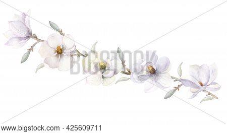 White Magnolia Flower. Hand-drawn Watercolor Illustrationa Branch With White Magnolia Flowers, Leave