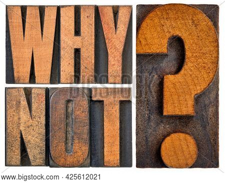 Why not question in letterpress wood type blocks isolated on white, teasing concept