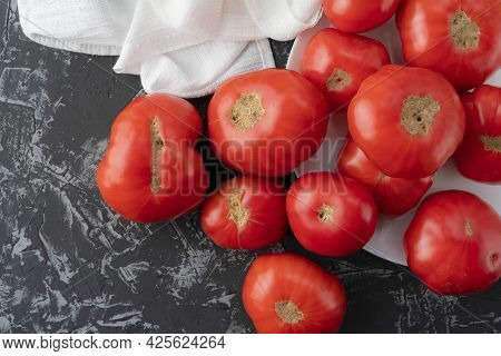 Fresh Unsightly And Ugly Home Grown Tomatoes From The Garden At The Kitchen Isolateds