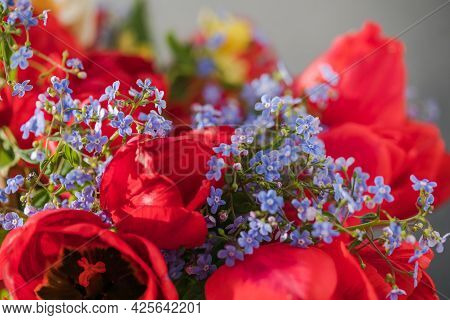 Summer Or Spring Bouquet Of Daffodils And Red Tulips. Blossom Of Spring Flowers.blossom Of Spring Fl