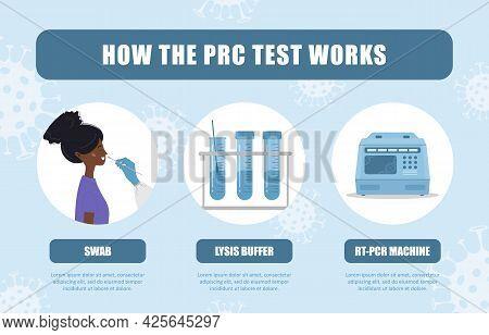 How Pcr Test Works. Nasal Swab Laboratory Analysis Of Biomaterial. Covid19 Coronavirus Testing Infog