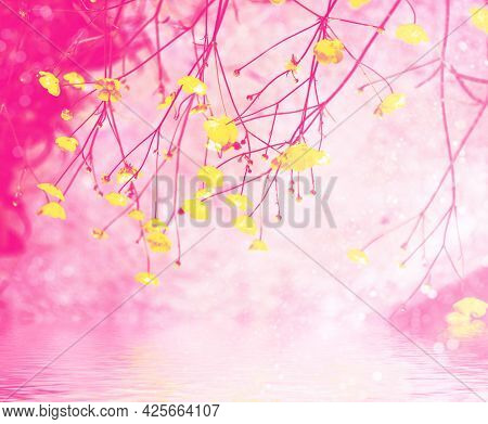 Blurred. Bright Yellow Flowers Buttercups On A Background Summer Landscape.