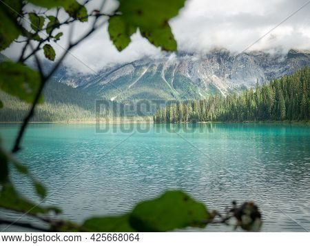 View On Pristine Mountain Lake Through Foliage, Shot At Emerald Lake, Yoho National Park, British Co