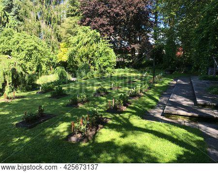 Landscape Of The Botanical Garden St. Gallen Or Landschaft Des Botanisches Garten St. Gallen, Schwei