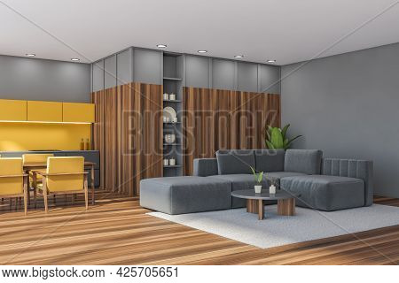 Studio With Kitchen And Living Room Interior. Grey Lower Drawers, Carpet, Walls And Sofa With Coffee