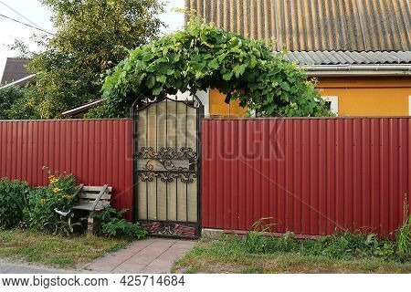 One Gray Closed Door With A Black Forged Pattern And A Red Iron Fence In The Street In Green Grass A