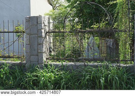Part Of A Fence Made Of Gray Stone Walls And Black Iron Rods Overgrown With Green Vegetation On The