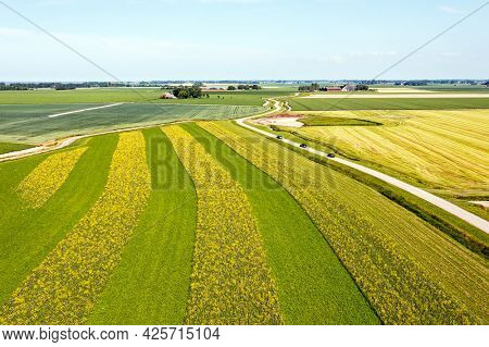 Aerial from rapeseed fields in Fries land the Netherlands