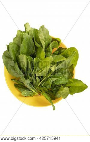 Fresh Spinach Leaves With Water Drops In Yellow Bowl Isolated On White