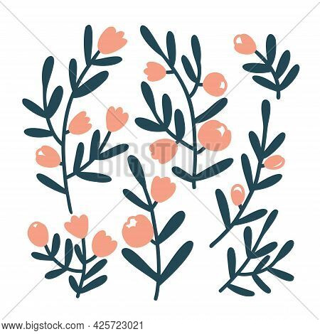 Set Flat Twigs With Flowers And Buds. Colorful Vector Illustration Isolated On White Background