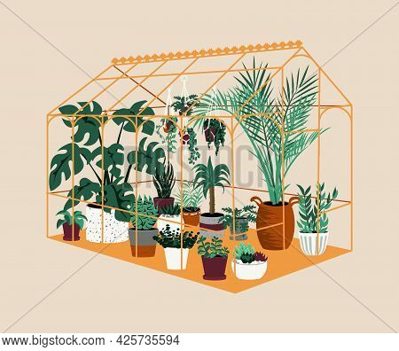 Greenhouse. Botanical House With Exotic And Home Cultivated Plants. Modern Garden With Decorative Po